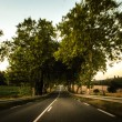 5 Things To Look Out For When Driving On Country Roads