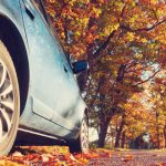 12 Top Tips for Drivers This Autumn